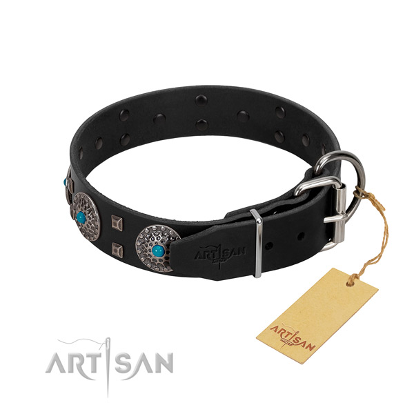 Soft full grain natural leather dog collar with adornments for everyday use