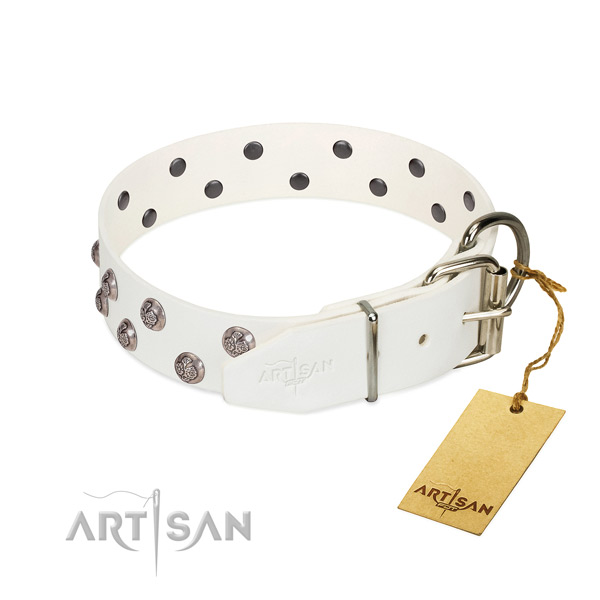 Rust-proof buckle on adorned full grain genuine leather dog collar