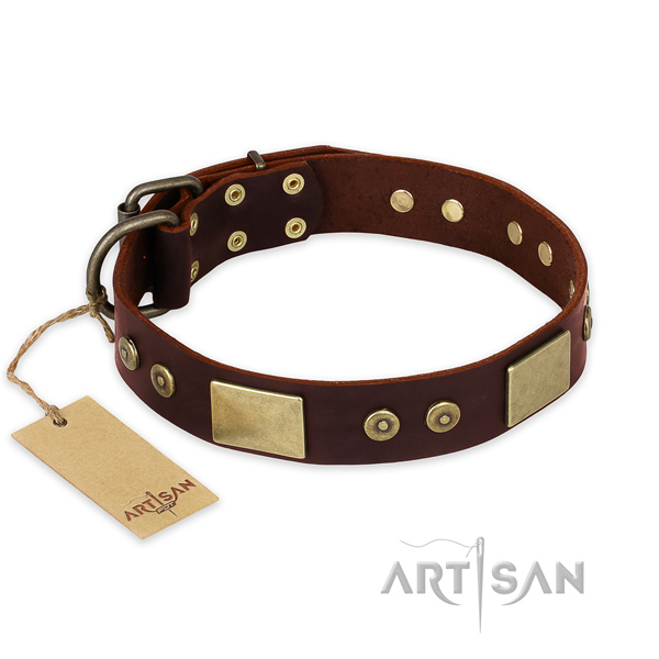 Incredible full grain leather dog collar for daily use