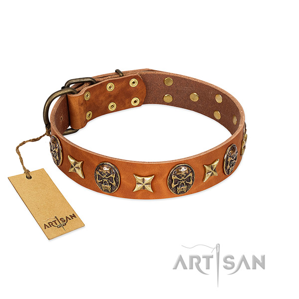 Unique full grain natural leather collar for your four-legged friend