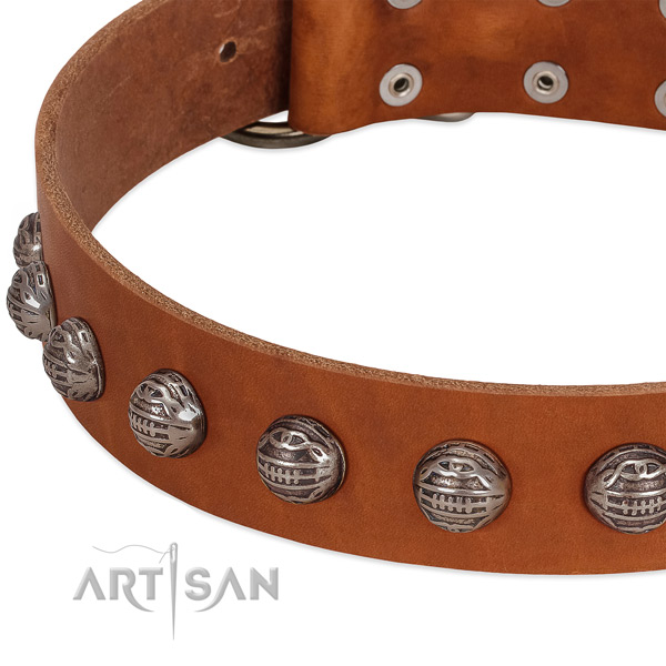 Designer leather dog collar with durable embellishments