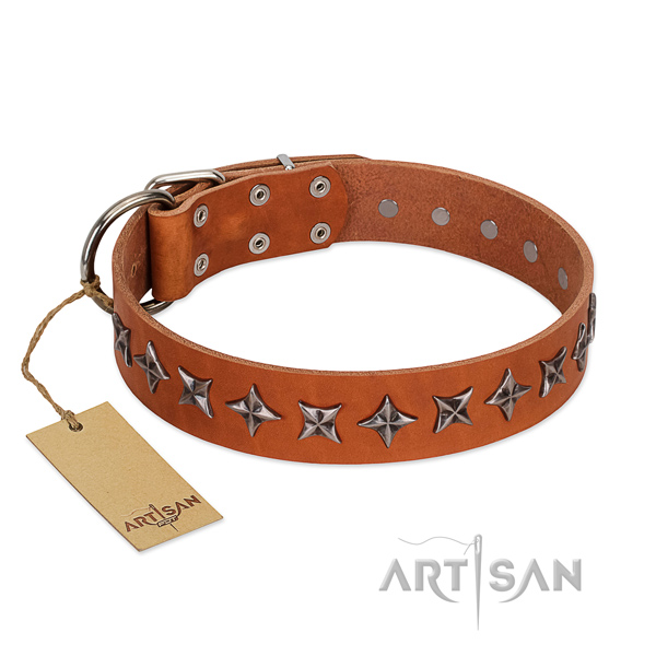 Basic training dog collar of high quality full grain natural leather with decorations