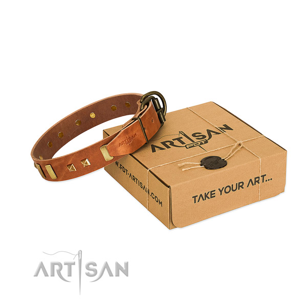 Reliable full grain natural leather dog collar with studs for daily walking