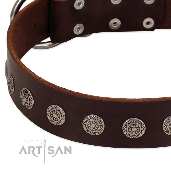 Stunning dog collar of leather with decorations