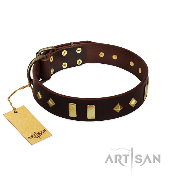 Natural leather dog collar with rust resistant fittings for handy use