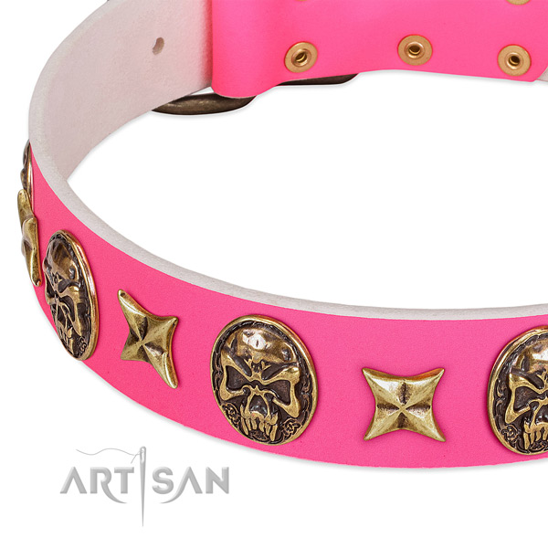 Natural leather dog collar with amazing embellishments