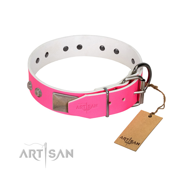 Walking dog collar of leather with remarkable adornments