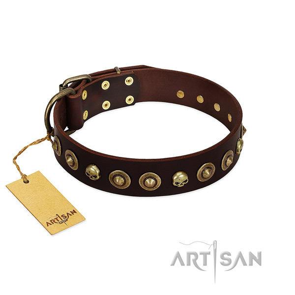 Natural leather collar with trendy embellishments for your canine