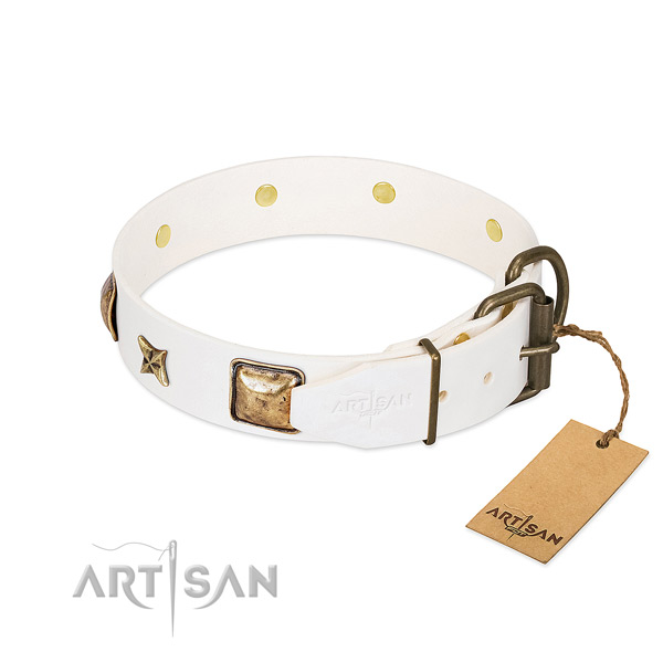 Full grain leather dog collar with durable D-ring and embellishments