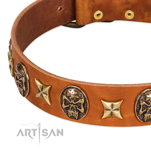 Rust resistant embellishments on natural genuine leather dog collar for your four-legged friend