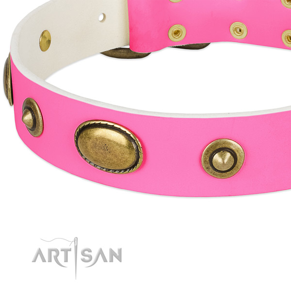 Durable adornments on genuine leather dog collar for your canine