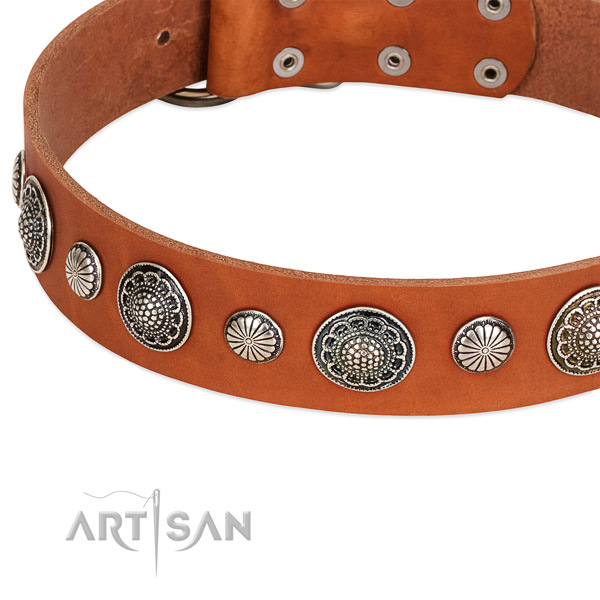 Genuine leather collar with reliable traditional buckle for your stylish four-legged friend