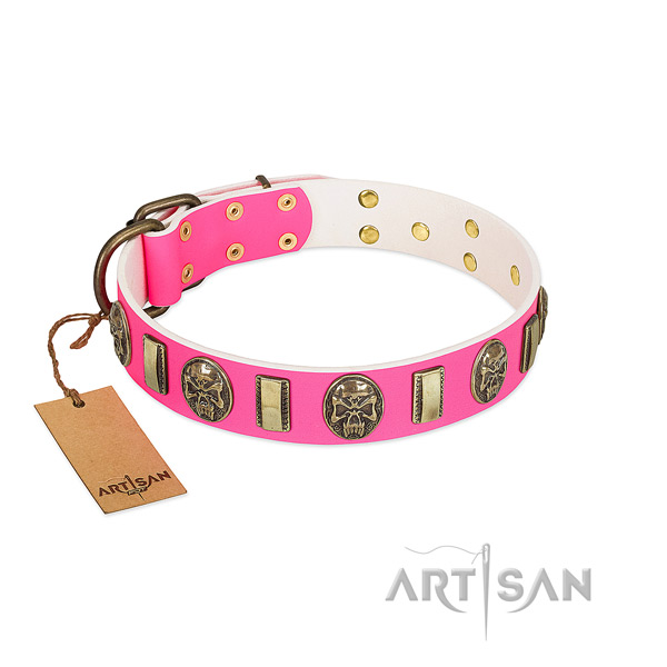 Corrosion proof embellishments on leather dog collar for your doggie