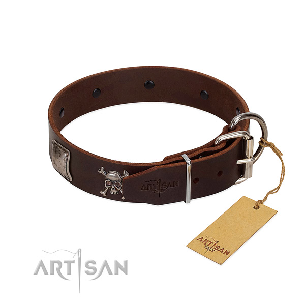 Amazing genuine leather collar for your impressive doggie