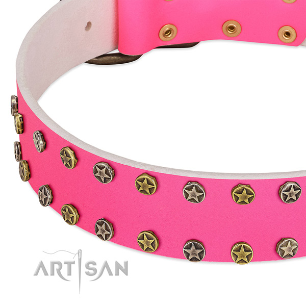 Gentle to touch full grain leather collar with adornments for your canine