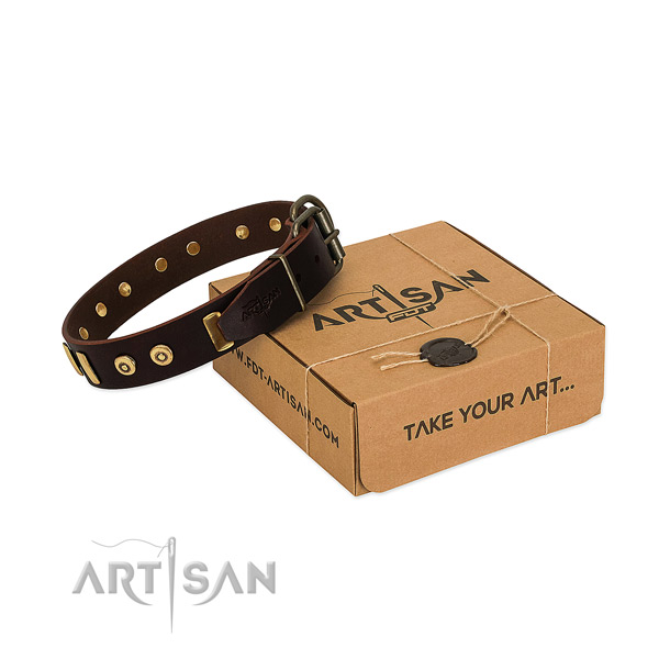 Durable natural leather dog collar with designer embellishments