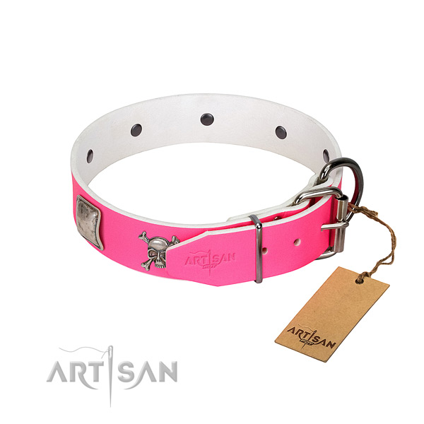 Designer genuine leather dog collar with corrosion proof studs