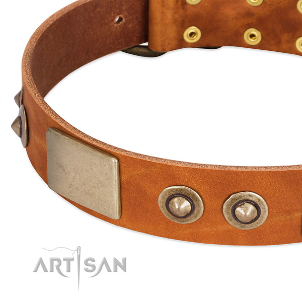 Reliable fittings on full grain genuine leather dog collar for your four-legged friend