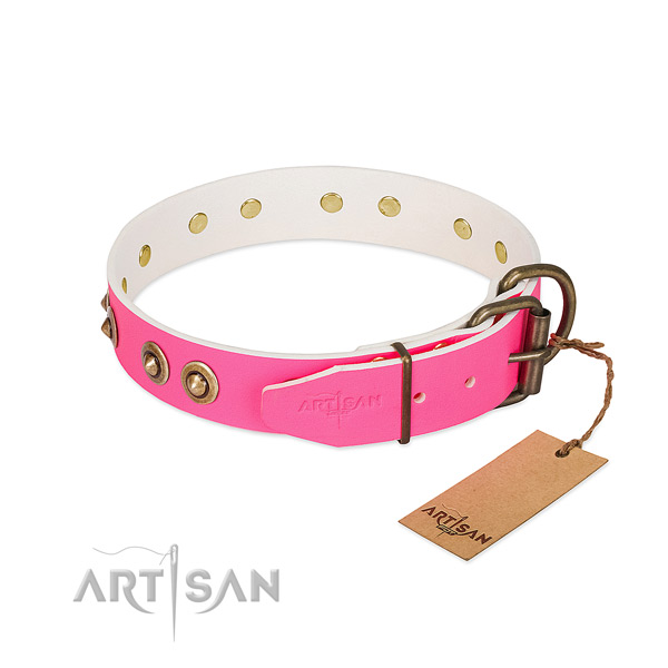 Leather dog collar with reliable buckle and embellishments