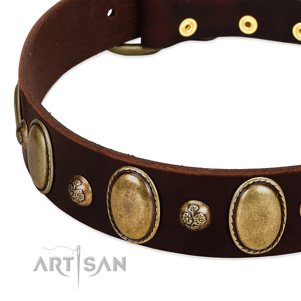 Natural leather dog collar with top notch decorations