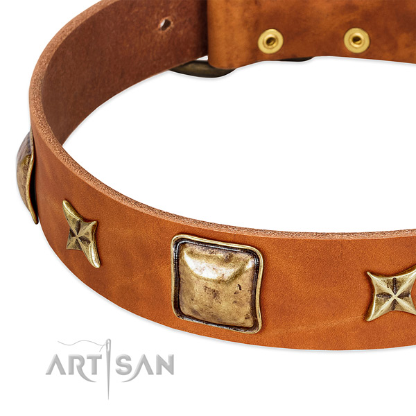 Corrosion resistant decorations on natural genuine leather dog collar for your pet