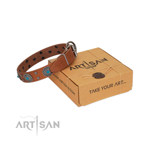 Comfortable wearing full grain genuine leather dog collar with incredible adornments