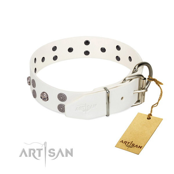 Gentle to touch full grain genuine leather dog collar with adornments for handy use