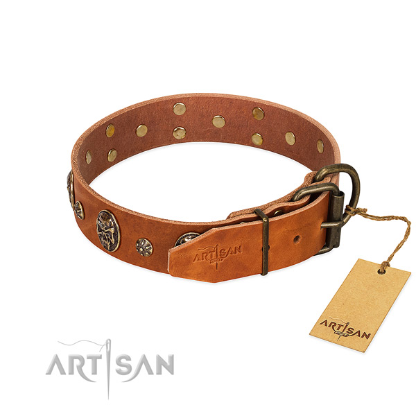 Rust resistant decorations on genuine leather dog collar for your dog