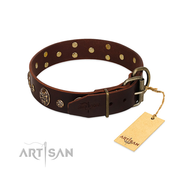 Reliable studs on full grain genuine leather dog collar for your doggie