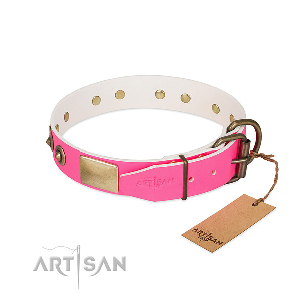 Corrosion proof studs on genuine leather dog collar for your four-legged friend