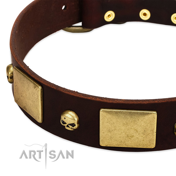 Soft natural leather collar with rust-proof adornments for your canine