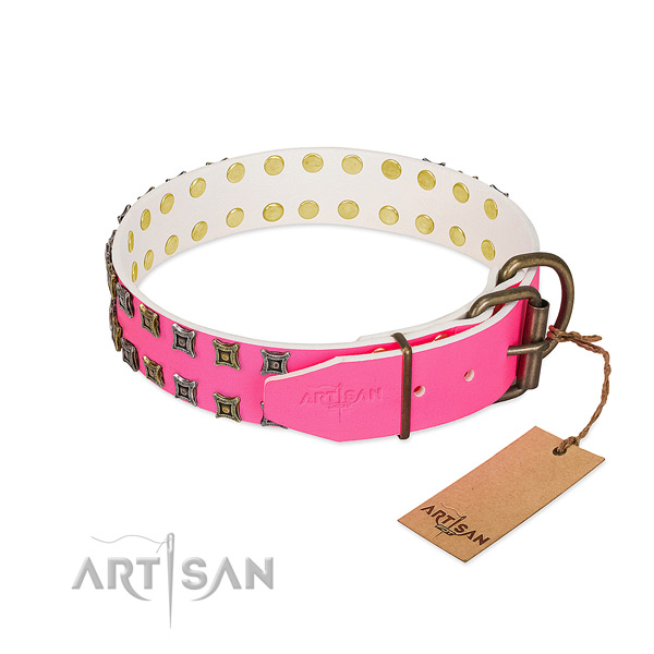 Genuine leather collar with trendy embellishments for your doggie