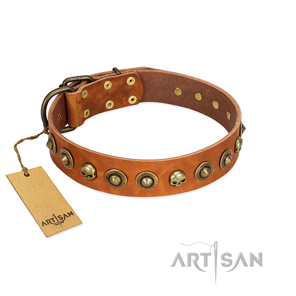 Full grain leather collar with inimitable studs for your doggie