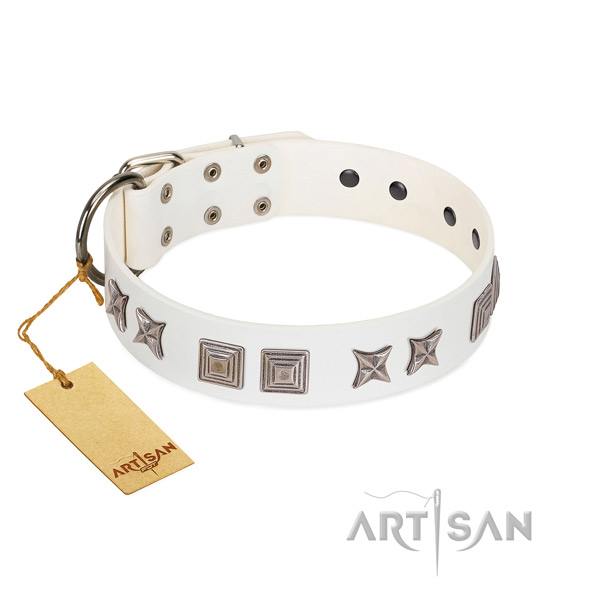 Genuine leather dog collar with stunning adornments crafted pet