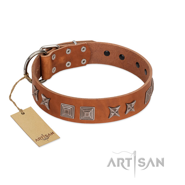 Genuine leather dog collar with extraordinary adornments made canine