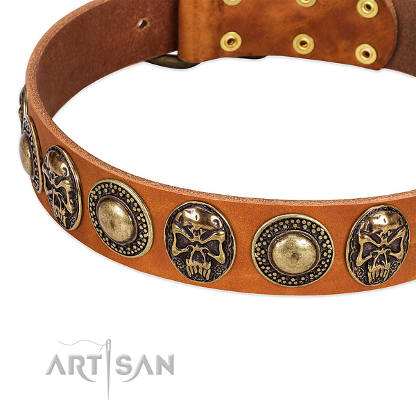 Rust resistant fittings on full grain natural leather dog collar for your dog