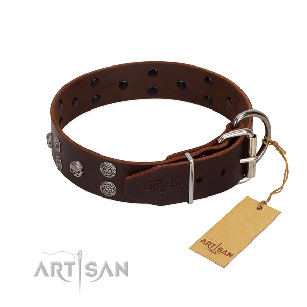 Quality natural leather dog collar with studs for daily use