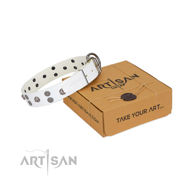 Stylish design adorned full grain genuine leather dog collar for fancy walking
