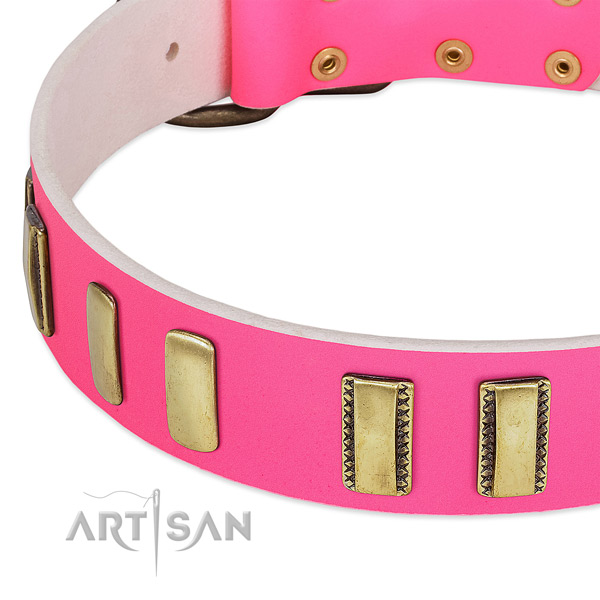 Gentle to touch leather dog collar with decorations for everyday use