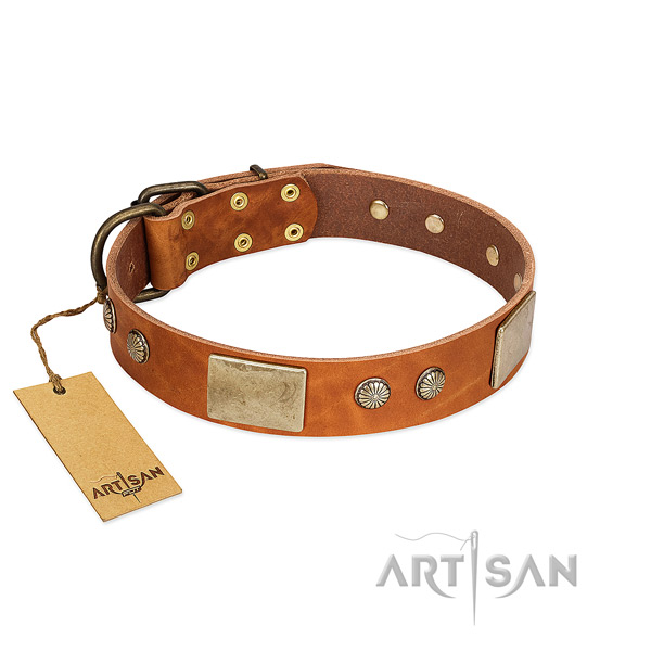 Easy to adjust leather dog collar for walking your dog