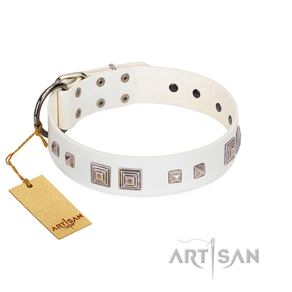 Everyday walking soft leather dog collar