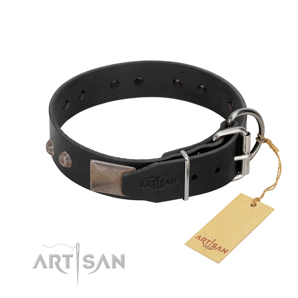 Exceptional genuine leather dog collar for everyday walking your doggie