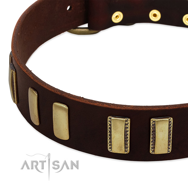 Full grain genuine leather dog collar with durable hardware for walking