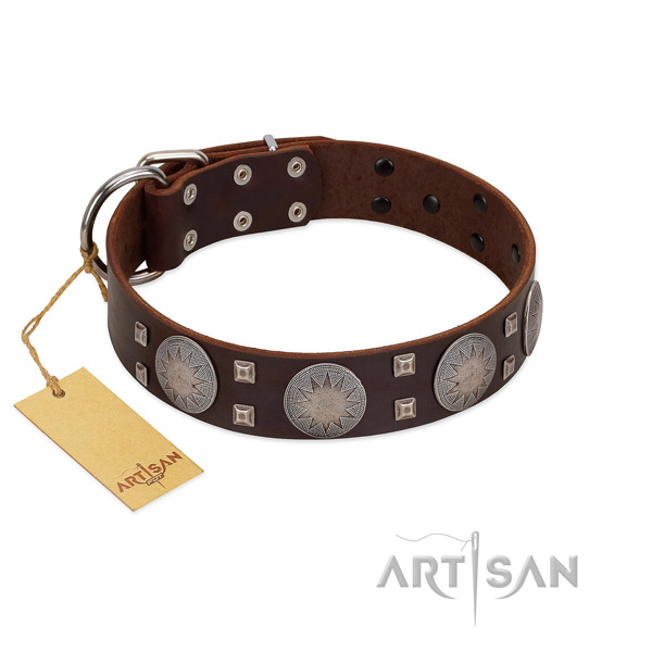 Amazing full grain genuine leather dog collar for everyday walking your canine