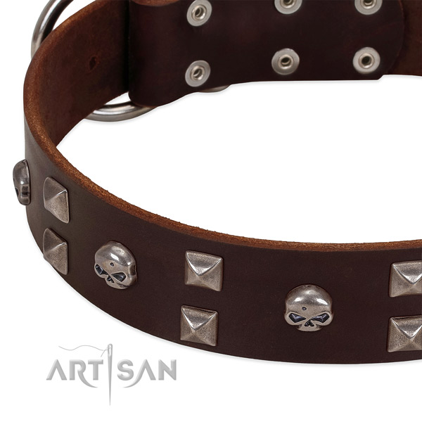 Flexible full grain genuine leather dog collar crafted for your dog