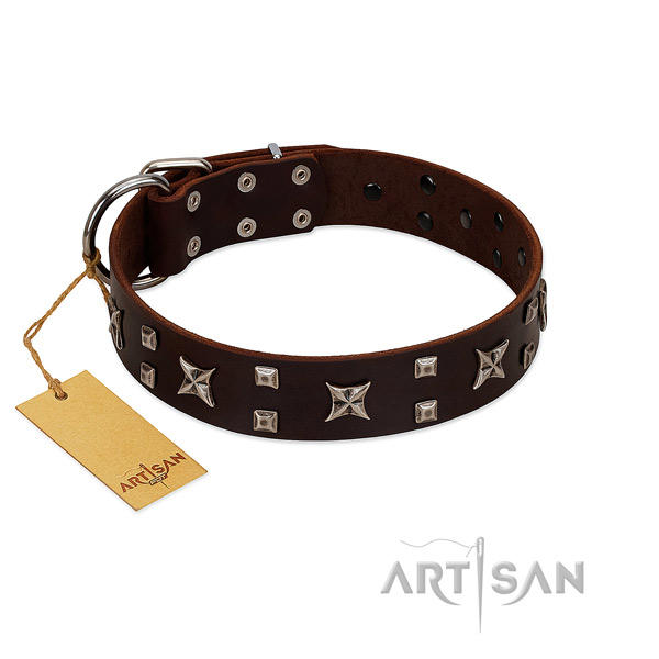 Reliable full grain natural leather dog collar with embellishments for stylish walking