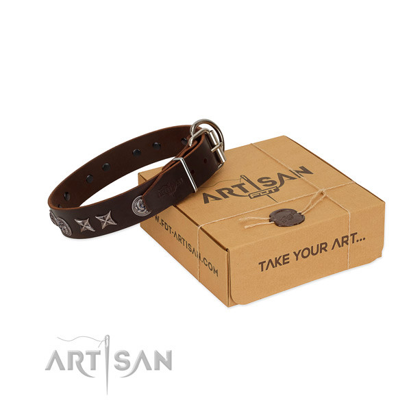 Everyday walking dog collar of genuine leather with stunning adornments