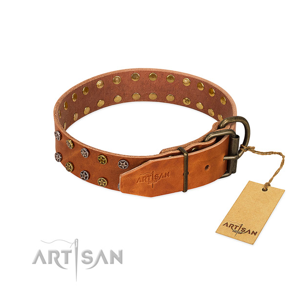 Comfortable wearing genuine leather dog collar with designer studs