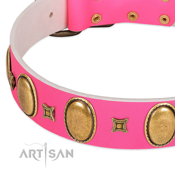 Top notch full grain natural leather dog collar with adornments for daily walking
