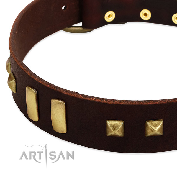 Best quality full grain genuine leather dog collar with embellishments for daily use
